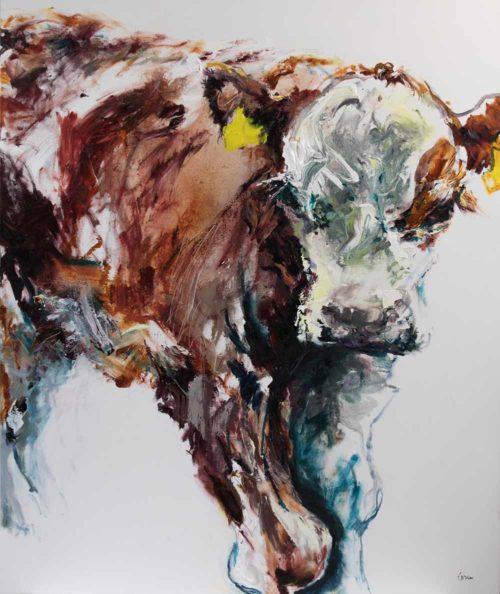 Bull Calf 2018